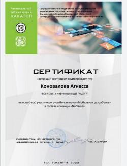 Областной онлайн-хакатон «Мобильная разработка»